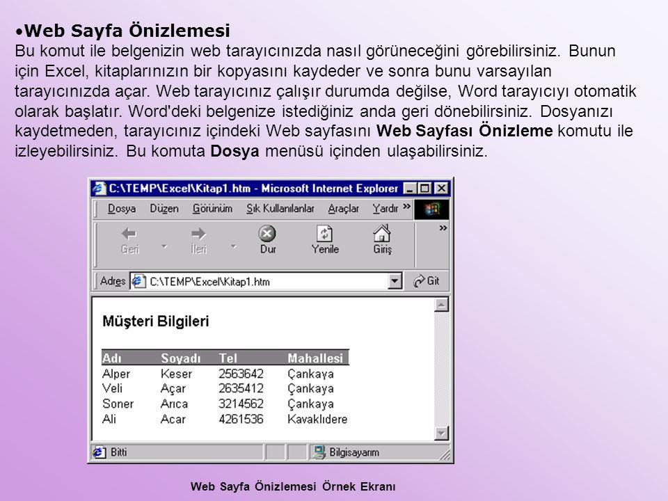 Web Sayfa Önizlemesi Örnek Ekranı