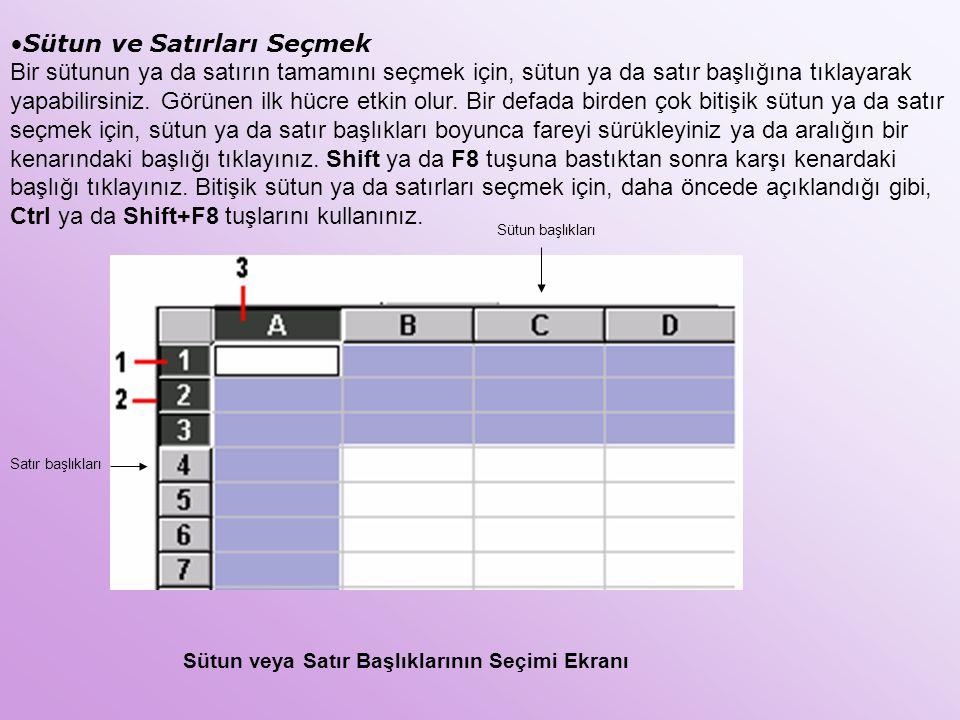 Sütun veya Satır Başlıklarının Seçimi Ekranı