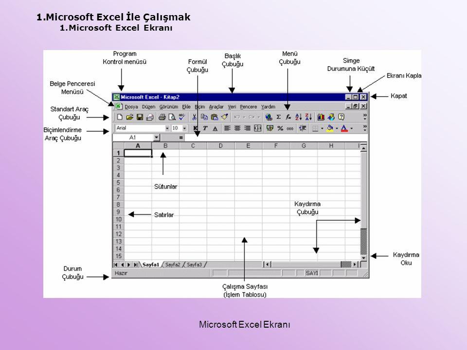 Microsoft Excel Ekranı