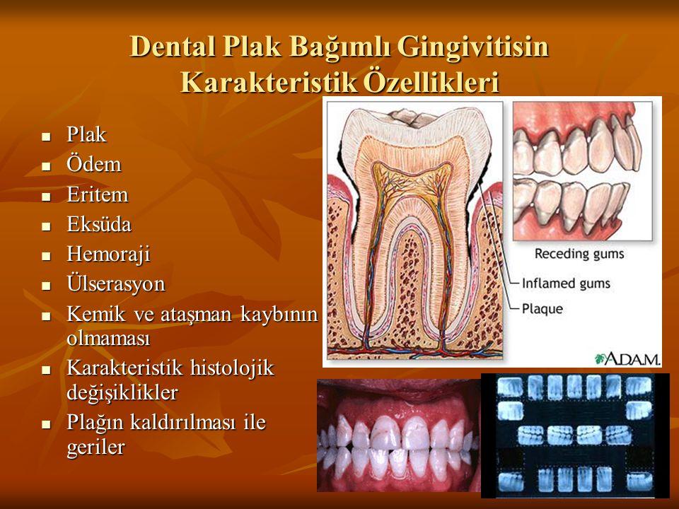 Dental Plak Bağımlı Gingivitisin Karakteristik Özellikleri