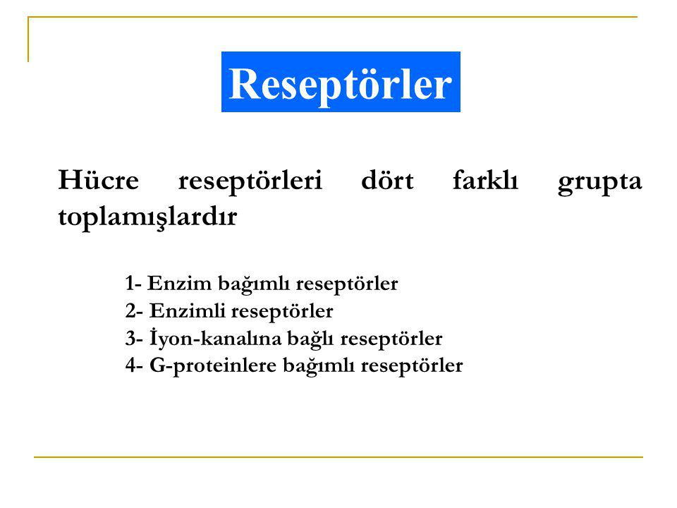 Reseptörler Hücre reseptörleri dört farklı grupta toplamışlardır