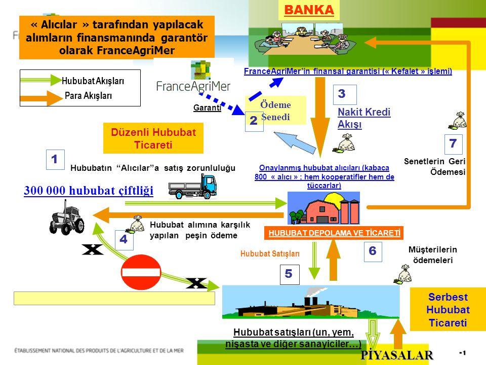 X BANKA 300 000 hububat çiftliği PİYASALAR 3 2 7 1 4 6 5