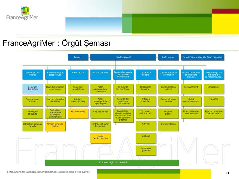 FranceAgriMer : Örgüt Şeması