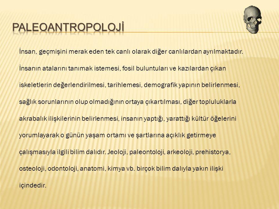 PALEOANTROPOLOJİ