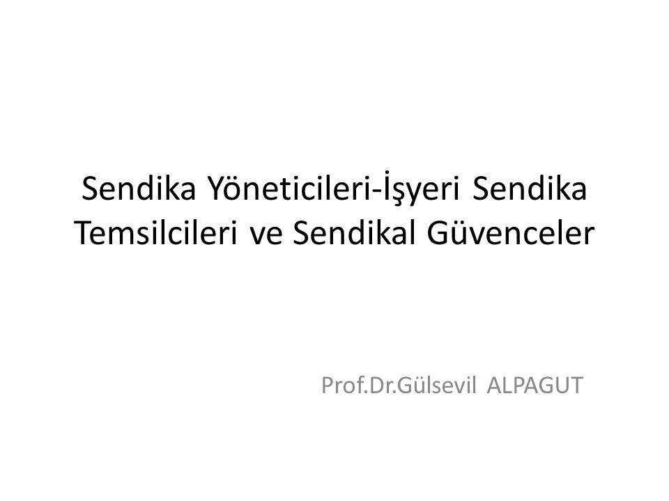 Prof.Dr.Gülsevil ALPAGUT