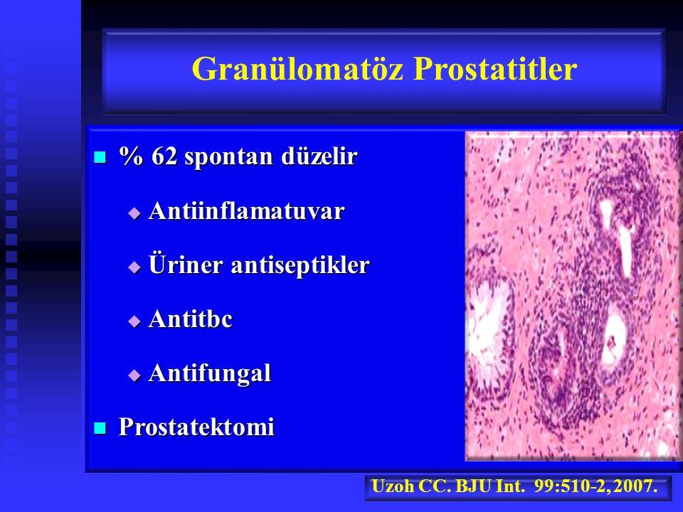 Granülomatöz Prostatitler