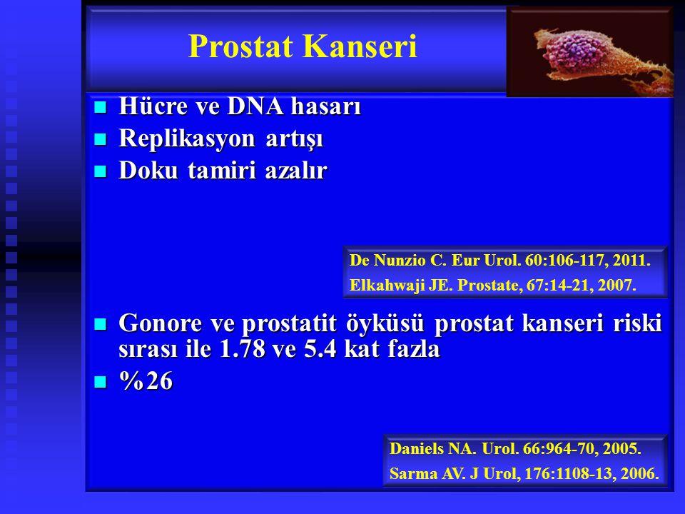 Prostat Kanseri Hücre ve DNA hasarı Replikasyon artışı