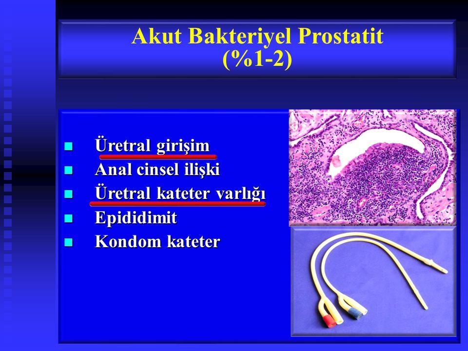 Akut Bakteriyel Prostatit (%1-2)