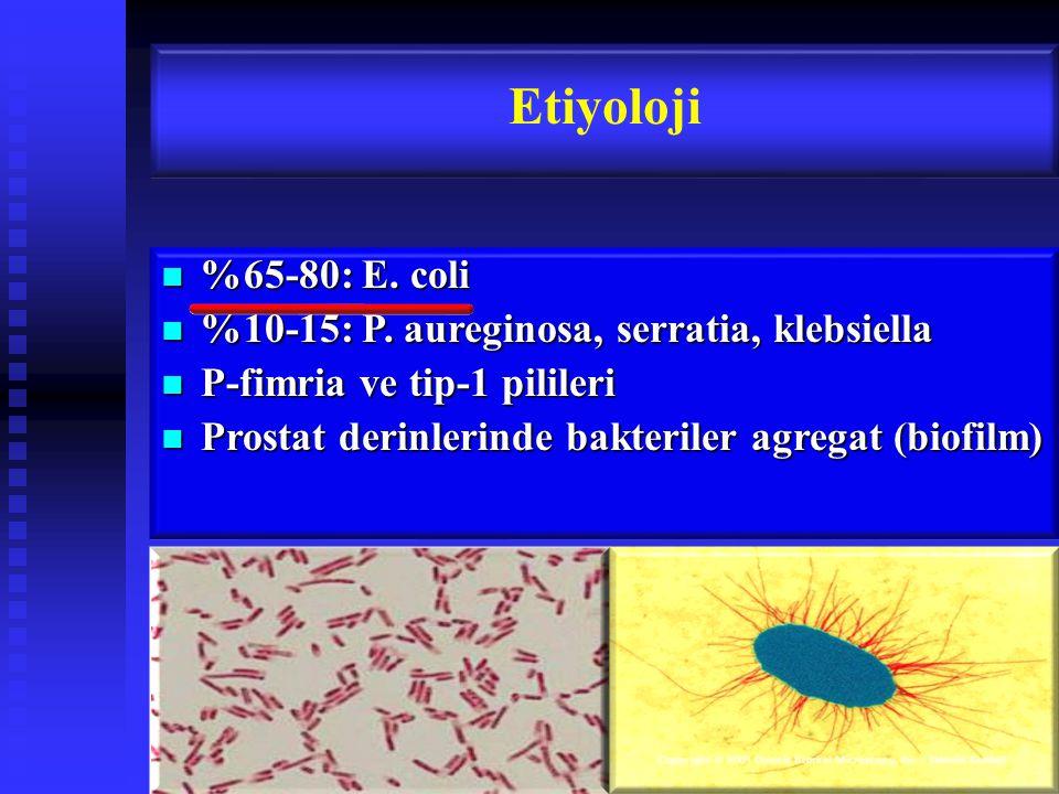 Etiyoloji %65-80: E. coli %10-15: P. aureginosa, serratia, klebsiella
