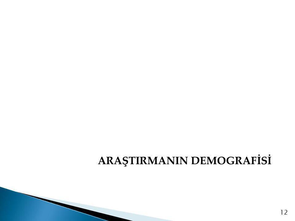 ARAŞTIRMANIN DEMOGRAFİSİ