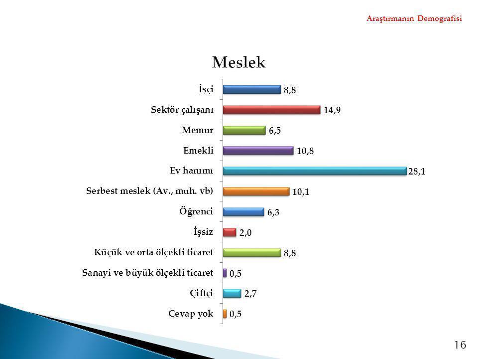 Araştırmanın Demografisi