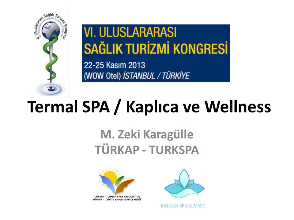 Termal SPA / Kaplıca ve Wellness