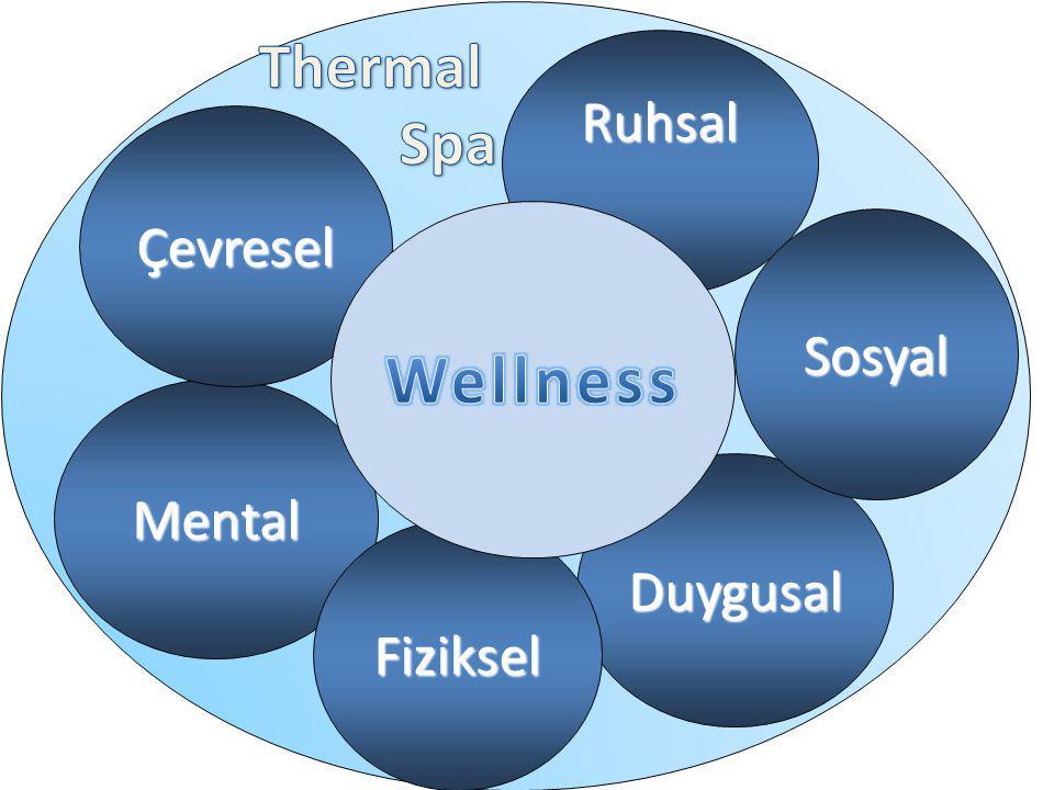 Thermal Spa Ruhsal Çevresel Wellness Sosyal Mental Duygusal Fiziksel