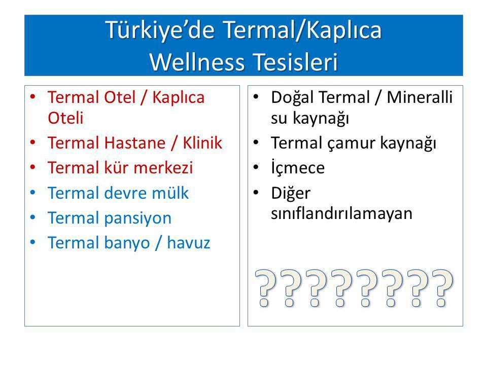 Türkiye'de Termal/Kaplıca Wellness Tesisleri