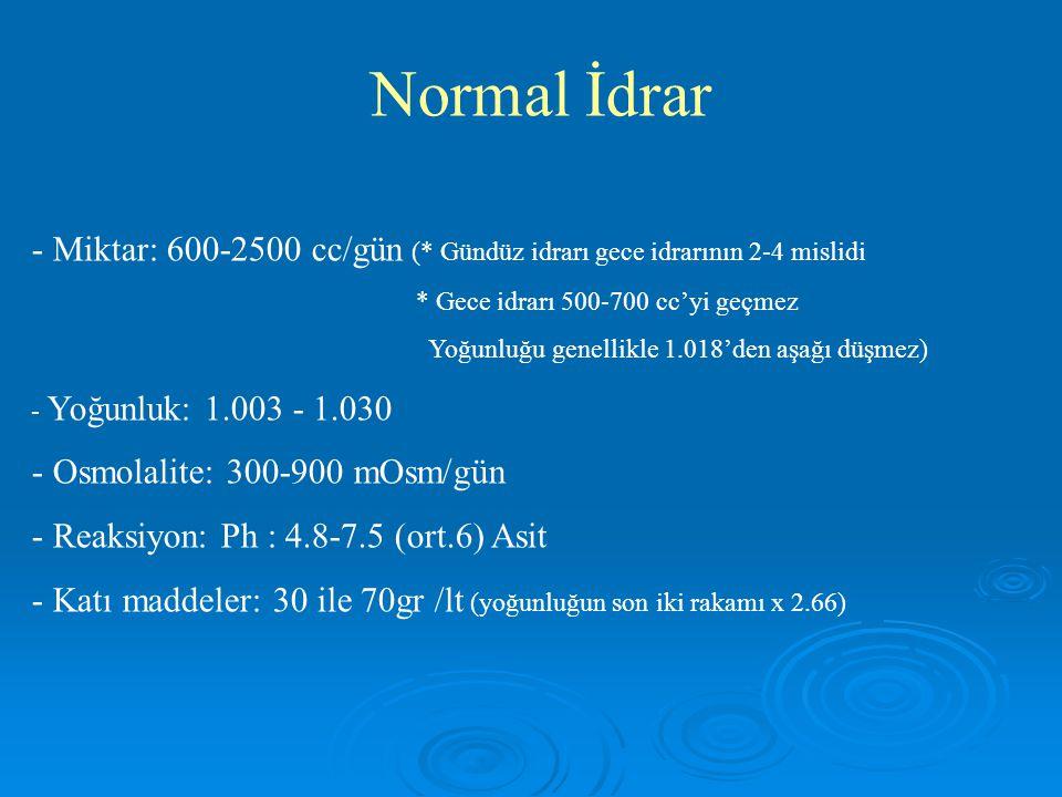 Normal İdrar - Miktar: 600-2500 cc/gün (* Gündüz idrarı gece idrarının 2-4 mislidi. * Gece idrarı 500-700 cc'yi geçmez.