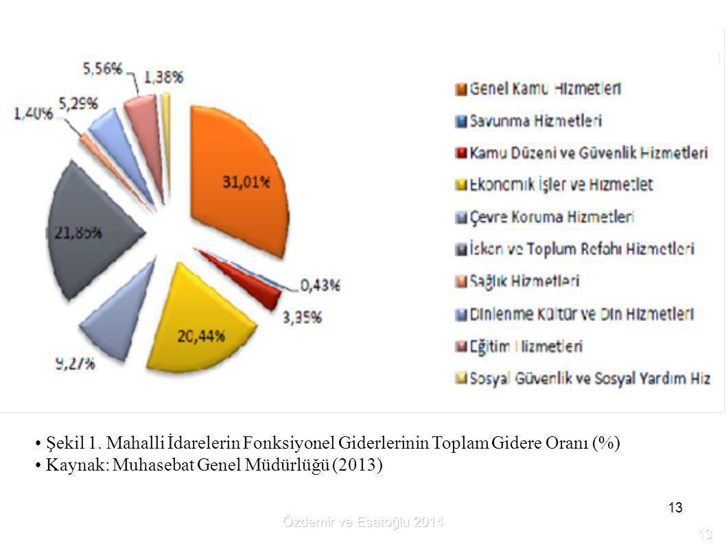 Kaynak: Muhasebat Genel Müdürlüğü (2013)