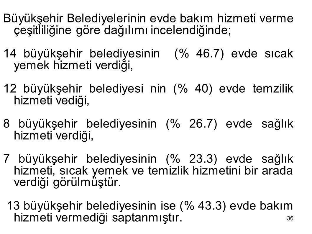 Büyükşehir Belediyelerinin evde bakım hizmeti verme çeşitliliğine göre dağılımı incelendiğinde;