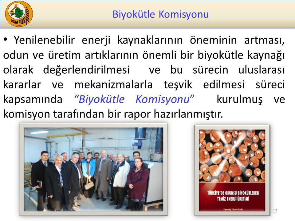Biyokütle Komisyonu