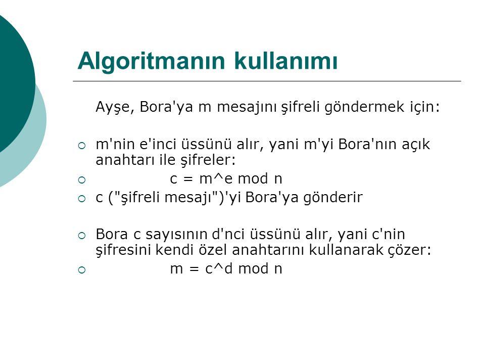 Algoritmanın kullanımı