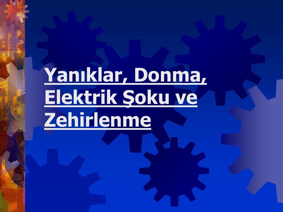 Yanıklar, Donma, Elektrik Şoku ve Zehirlenme