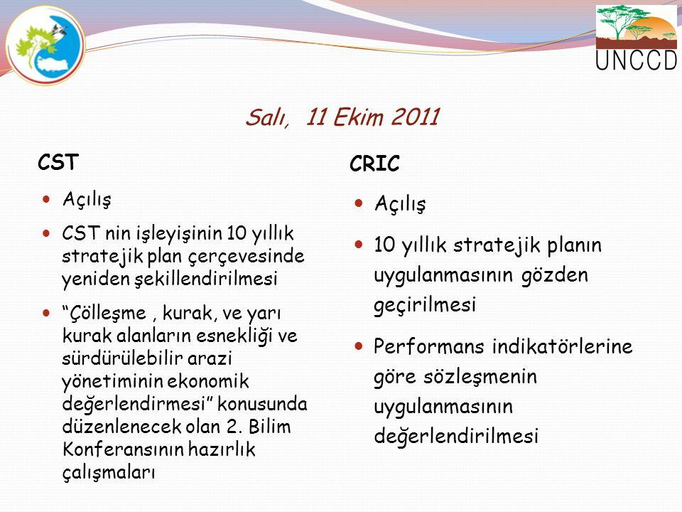 Salı, 11 Ekim 2011 CST CRIC Açılış