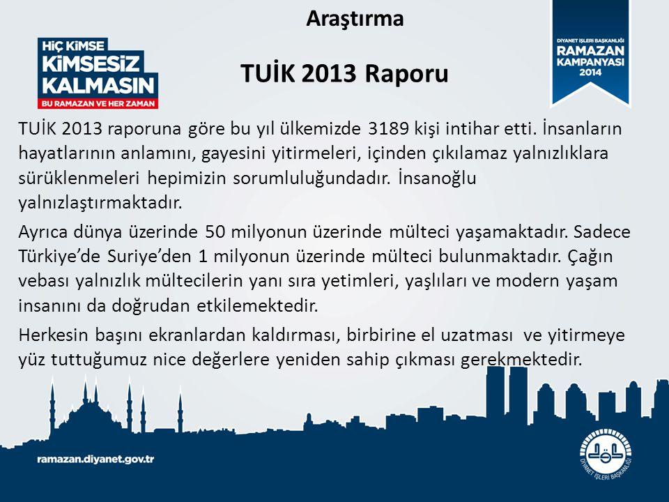 Araştırma TUİK 2013 Raporu.