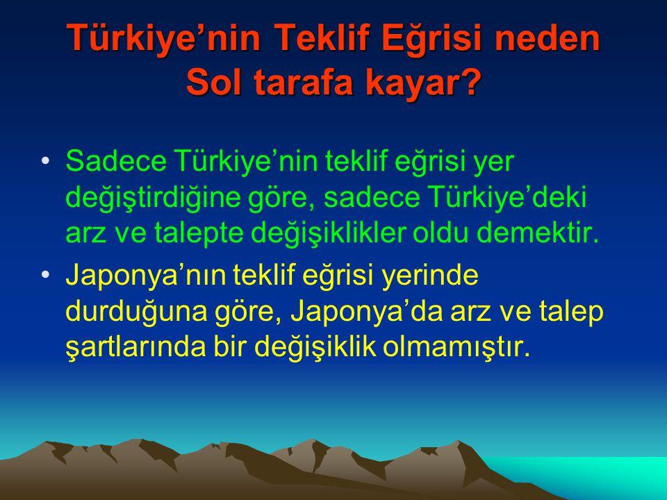Türkiye'nin Teklif Eğrisi neden Sol tarafa kayar