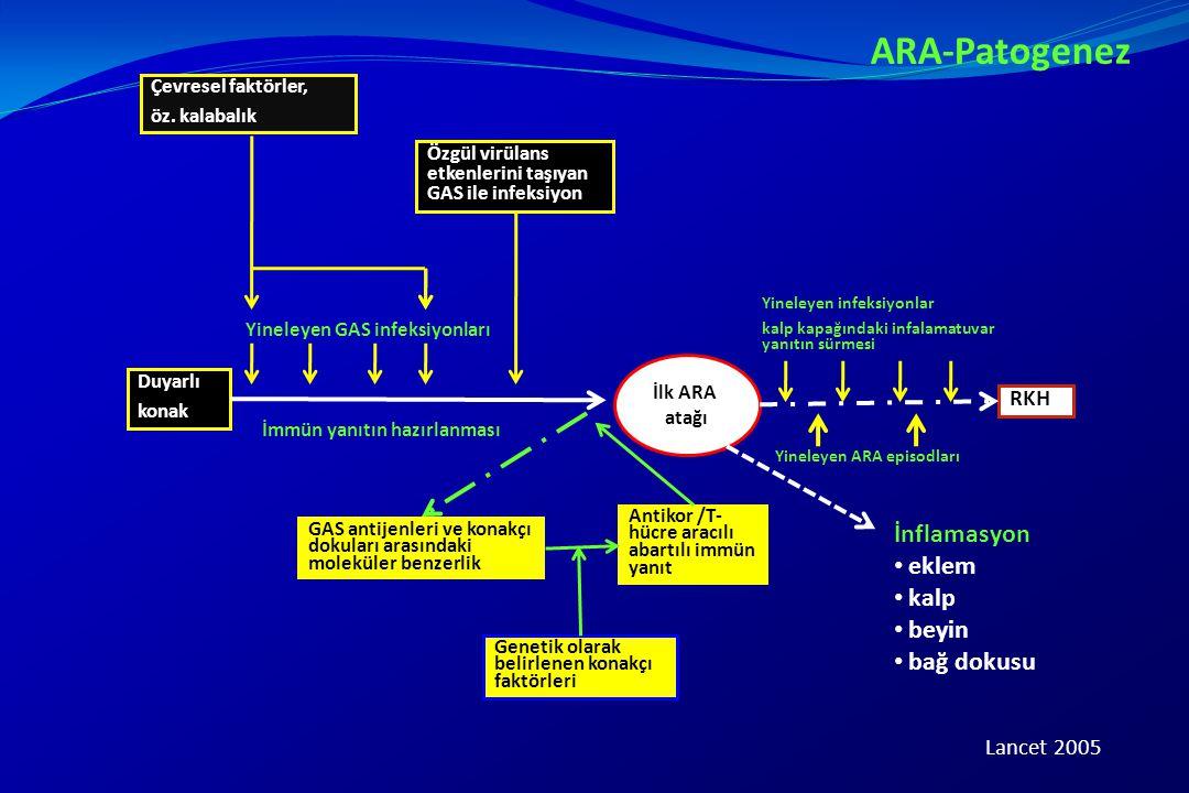 ARA-Patogenez İnflamasyon eklem kalp beyin bağ dokusu RKH Lancet 2005