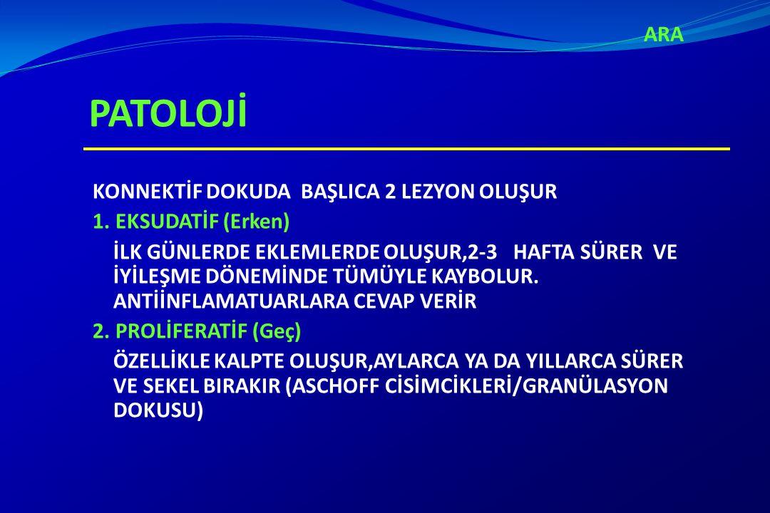 ARA PATOLOJİ.