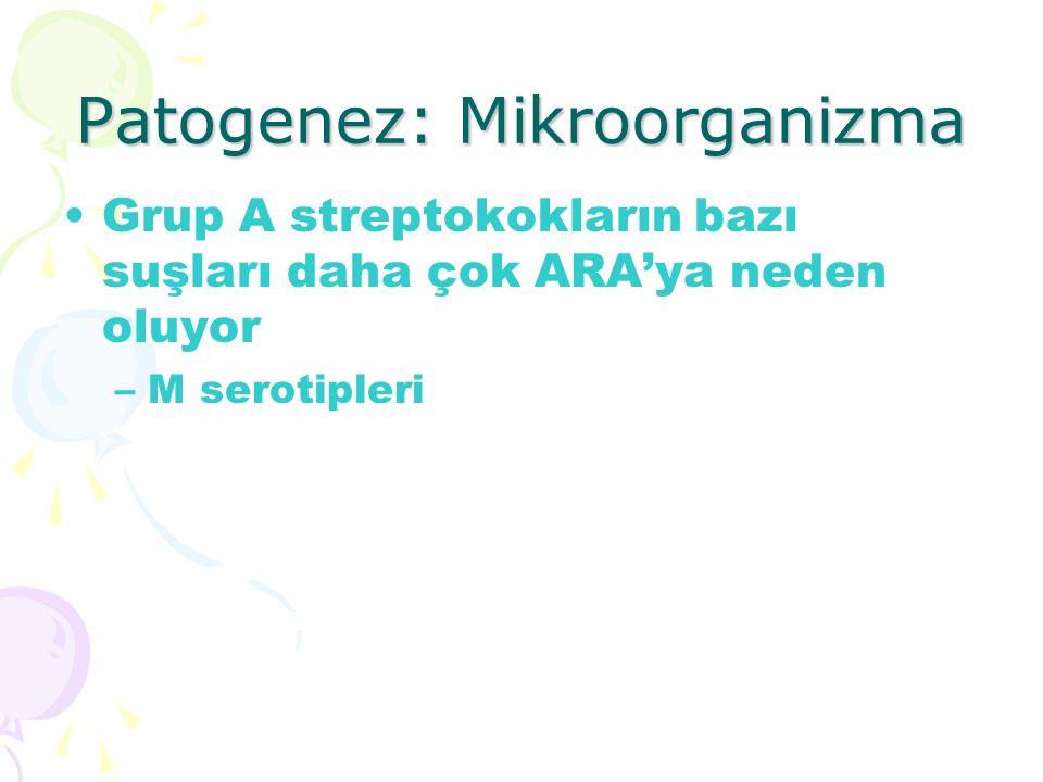 Patogenez: Mikroorganizma