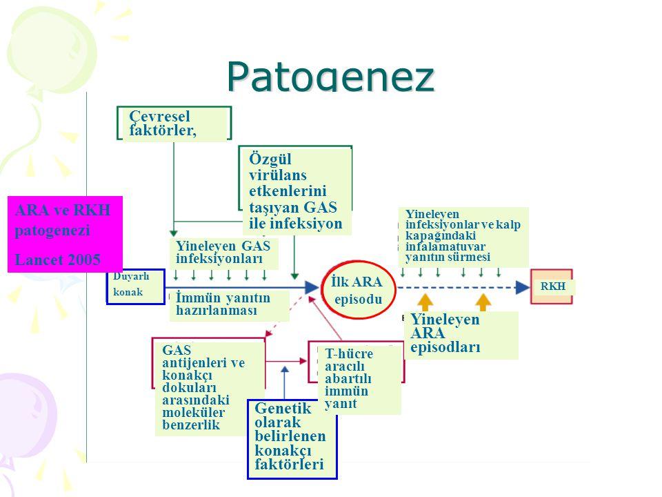 Patogenez Çevresel faktörler,
