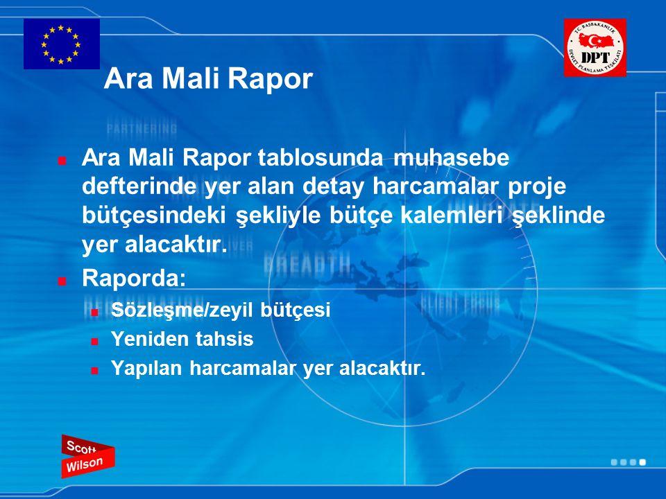 Ara Mali Rapor