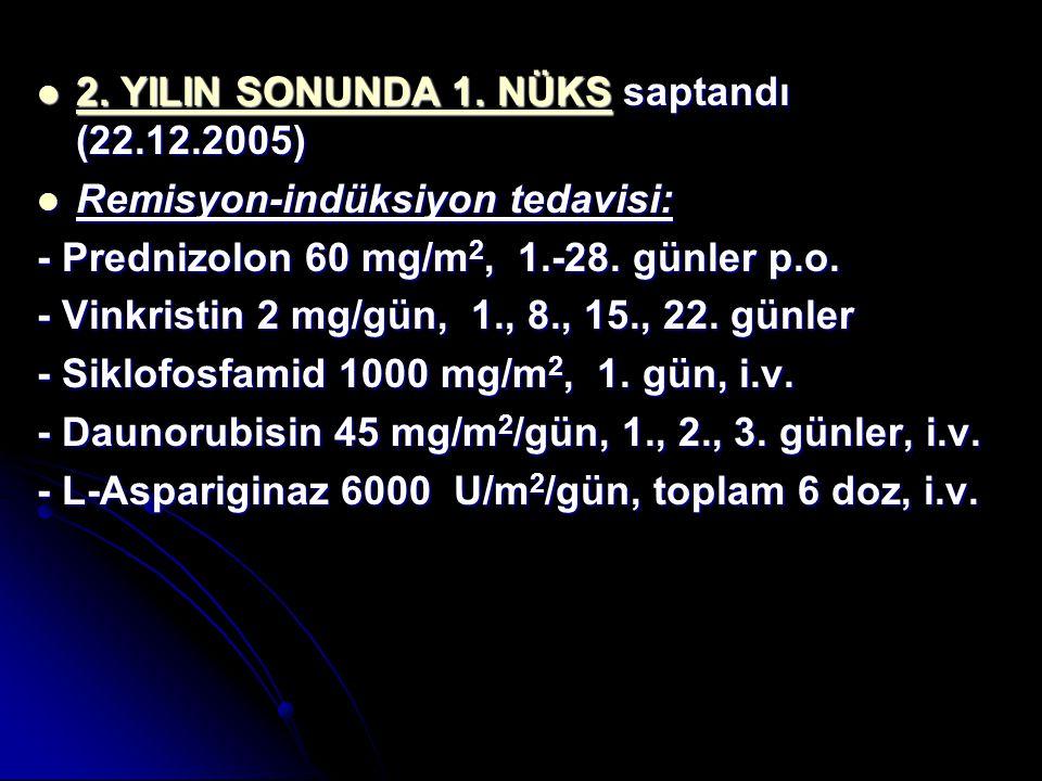 2. YILIN SONUNDA 1. NÜKS saptandı (22.12.2005)