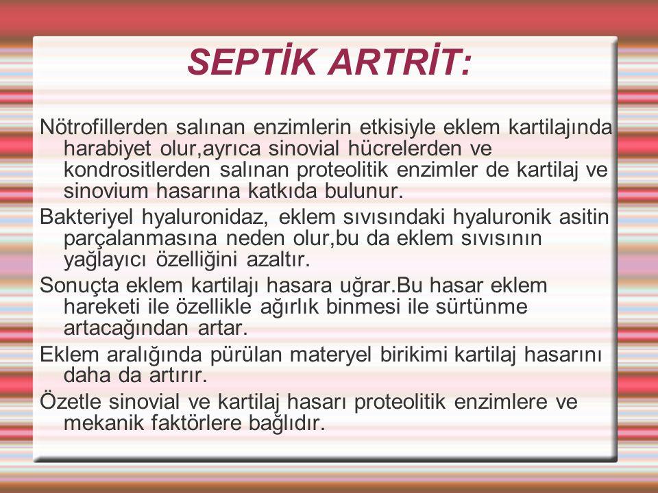 SEPTİK ARTRİT: