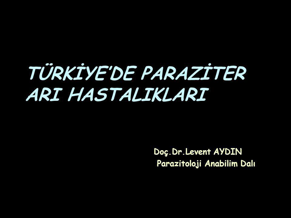 TÜRKİYE'DE PARAZİTER ARI HASTALIKLARI