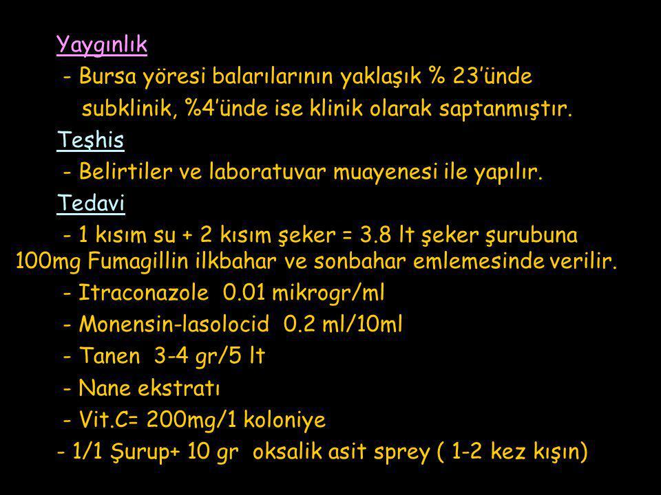 Yaygınlık - Bursa yöresi balarılarının yaklaşık % 23'ünde. subklinik, %4'ünde ise klinik olarak saptanmıştır.