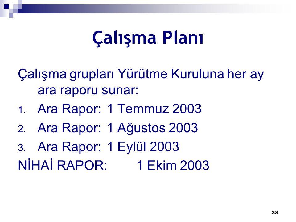 Çalışma Planı Çalışma grupları Yürütme Kuruluna her ay ara raporu sunar: Ara Rapor: 1 Temmuz 2003.