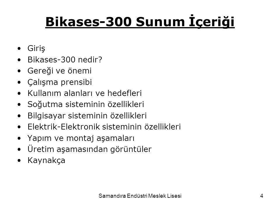Bikases-300 Sunum İçeriği