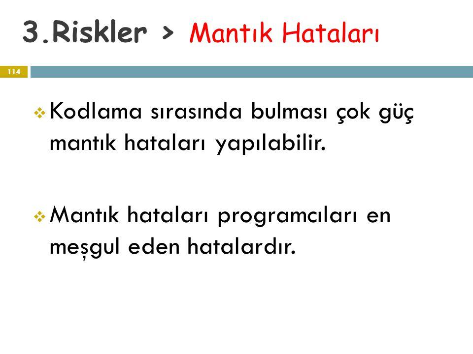 3.Riskler > Mantık Hataları