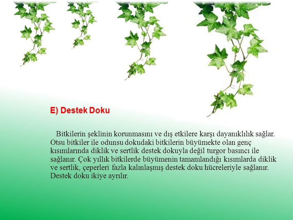 E) Destek Doku