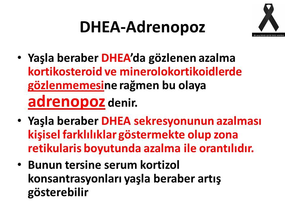 DHEA-Adrenopoz Yaşla beraber DHEA'da gözlenen azalma kortikosteroid ve minerolokortikoidlerde gözlenmemesine rağmen bu olaya adrenopoz denir.