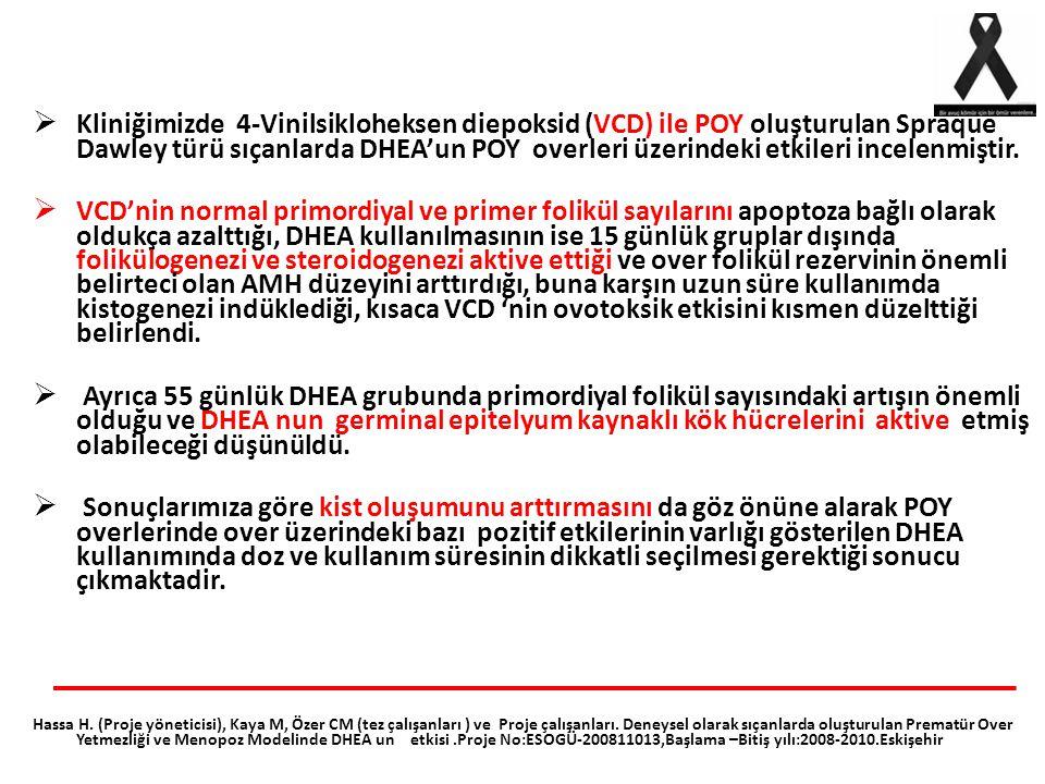 Kliniğimizde 4-Vinilsikloheksen diepoksid (VCD) ile POY oluşturulan Spraque Dawley türü sıçanlarda DHEA'un POY overleri üzerindeki etkileri incelenmiştir.