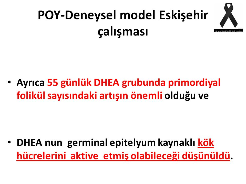 POY-Deneysel model Eskişehir çalışması