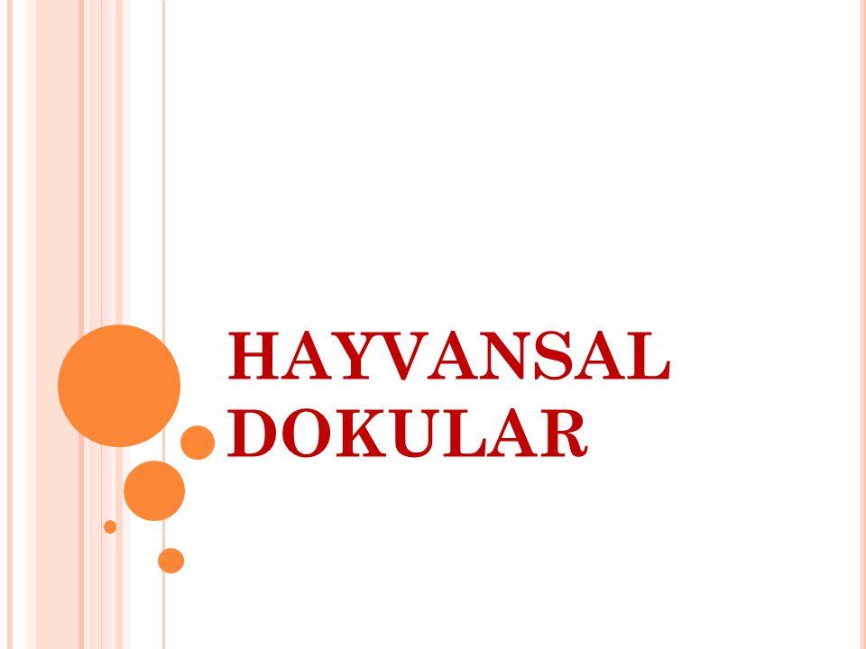 HAYVANSAL DOKULAR