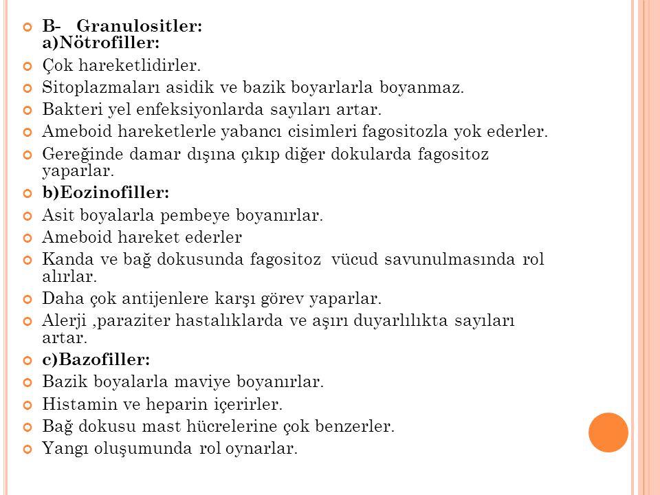 B- Granulositler: a)Nötrofiller: