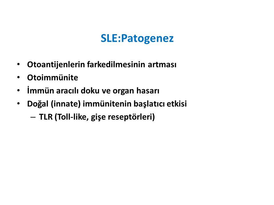 SLE:Patogenez Otoantijenlerin farkedilmesinin artması Otoimmünite