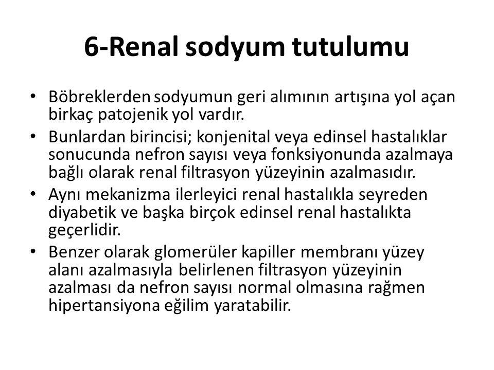 6-Renal sodyum tutulumu