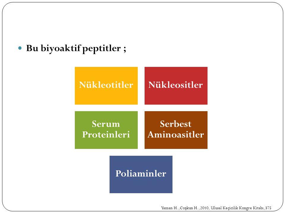 Bu biyoaktif peptitler ;