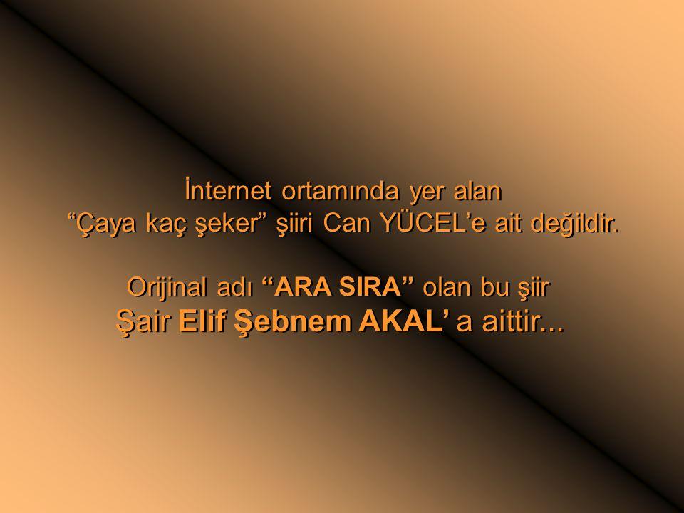 Şair Elif Şebnem AKAL' a aittir...