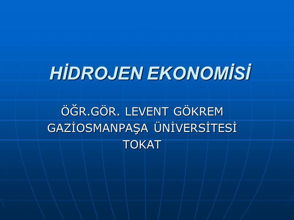 ÖĞR.GÖR. LEVENT GÖKREM GAZİOSMANPAŞA ÜNİVERSİTESİ TOKAT